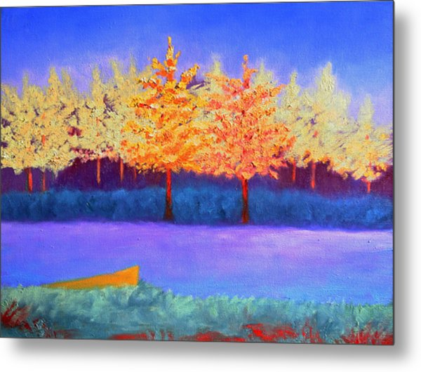 Brians Lake Metal Print