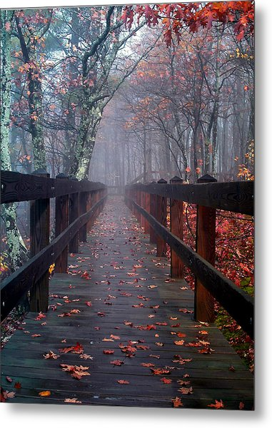 Bridge To Mist Woods Metal Print
