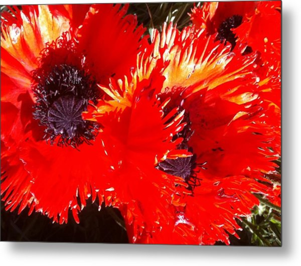 Bright Red Metal Print by Ken Riddle