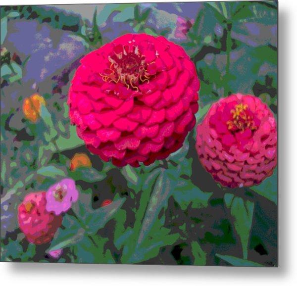 Bright Red Zinnia Flower Metal Print by Padre Art