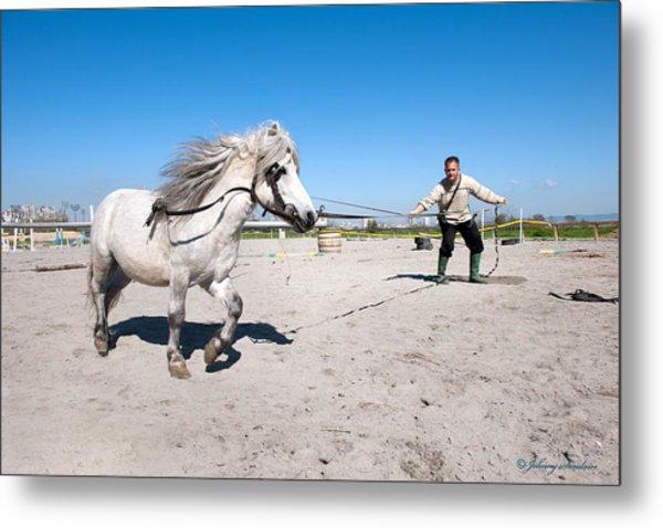 Bulgaria Horse Metal Print
