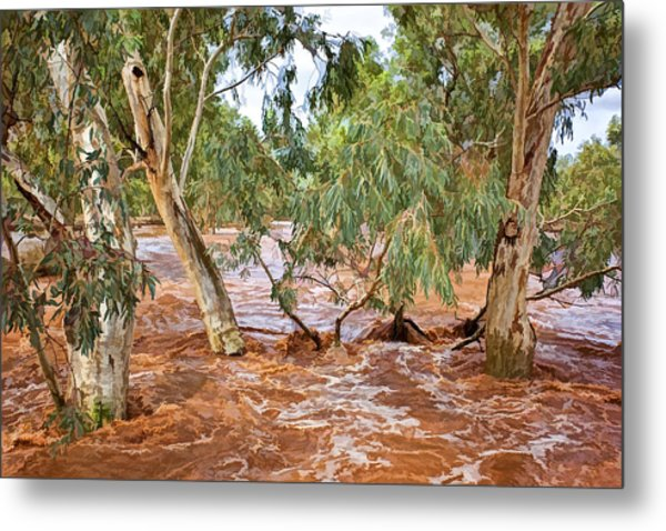 Bush Flood Metal Print