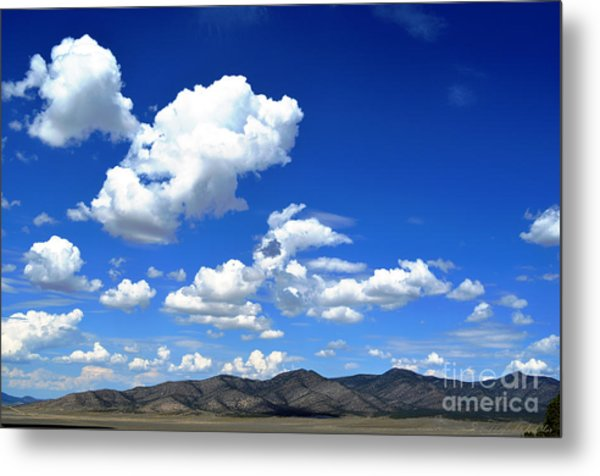 Butte Valley Nevada Metal Print
