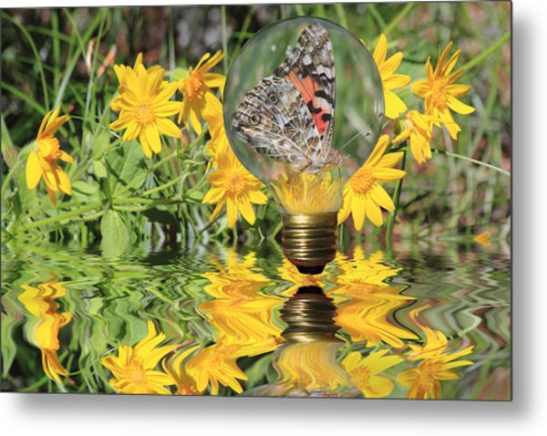 Metal Print featuring the photograph Butterfly In A Bulb II - Landscape by Shane Bechler