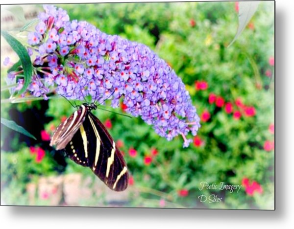 Butterfly Plant Metal Print by Debbie Sikes