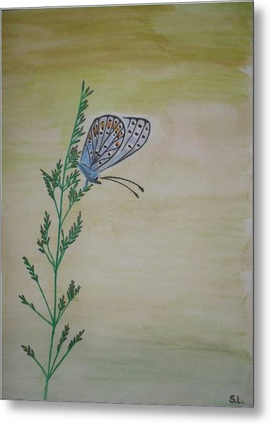 Butterfly Metal Print by Silvia Louro