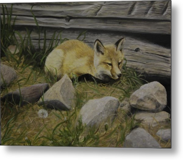 By The Den Metal Print