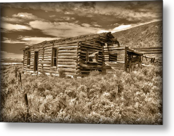 Metal Print featuring the photograph Cabin Fever by Shane Bechler