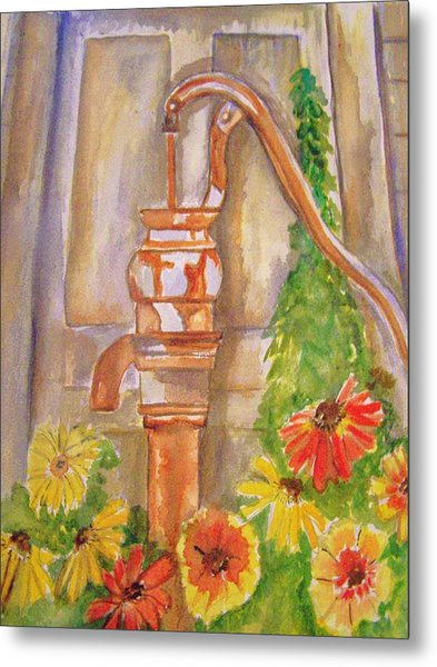 Calico Water Pump Metal Print