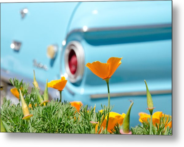 Metal Print featuring the photograph California Poppy by Margaret Pitcher
