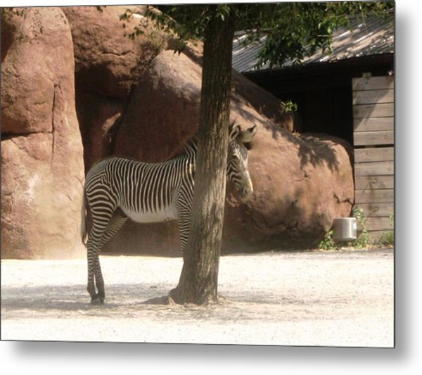 Can You See Me Now? Metal Print
