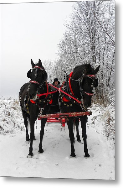 Canadian Team In A Winter Wonderland Metal Print
