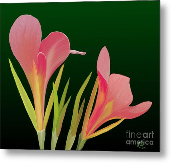 Canna Lilly Whimsy Metal Print