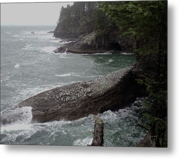 Cape Flattery Shoreline Metal Print by Fred Russell