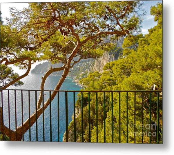 Capri Panorama With Tree Metal Print