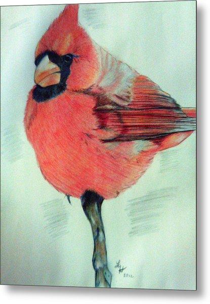 Cardinal Study Metal Print
