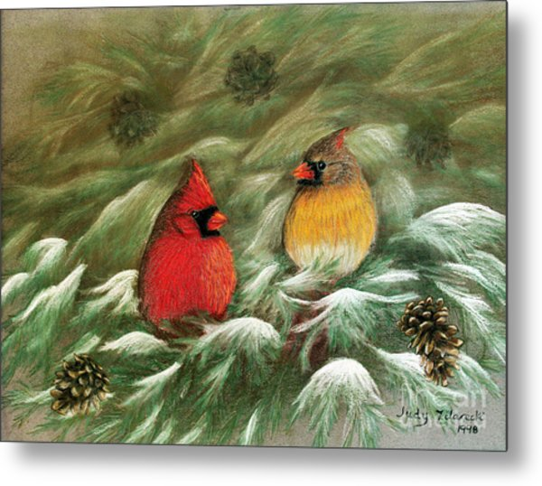 Cardinals In Winter Male And Female Cardinals Metal Print