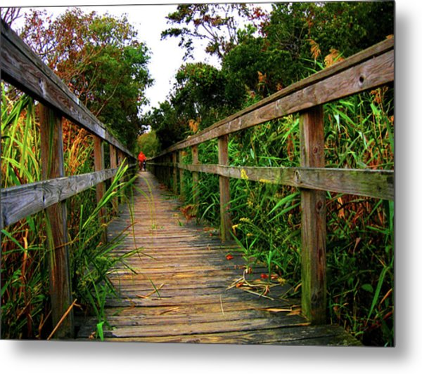 Carrituck Perspective Metal Print by Ed Golden