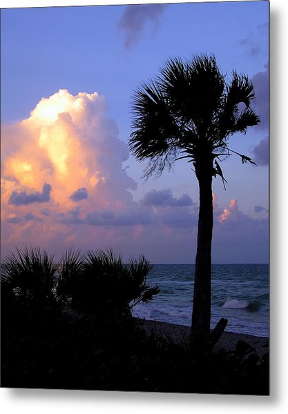 Casperson Beach Sunrise With Palm Metal Print