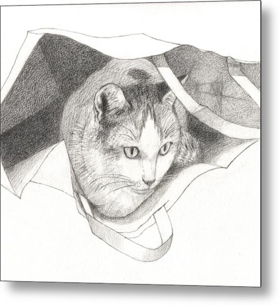 Cat In A Bag Metal Print