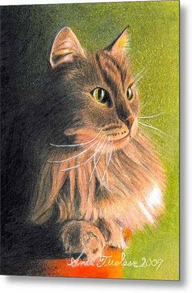 Cat Miniature Metal Print