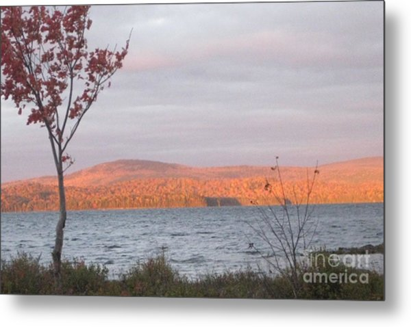 Caucomgomoc Lake Sunrise In Maine Metal Print