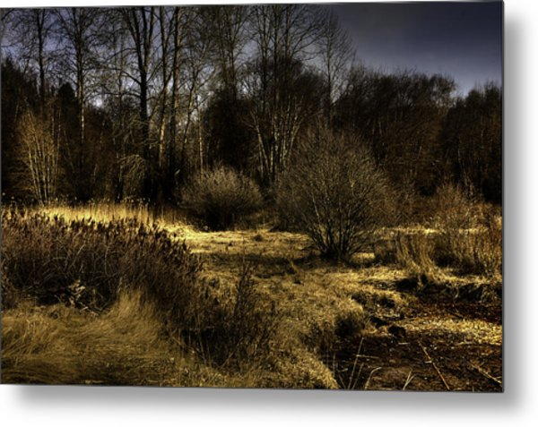 Cd'a River Flood Plain Metal Print by Grover Woessner