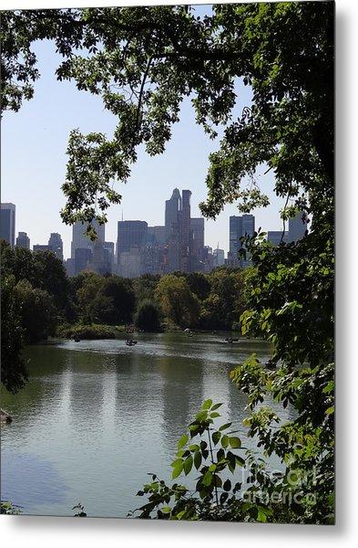 Central Park 35 Metal Print