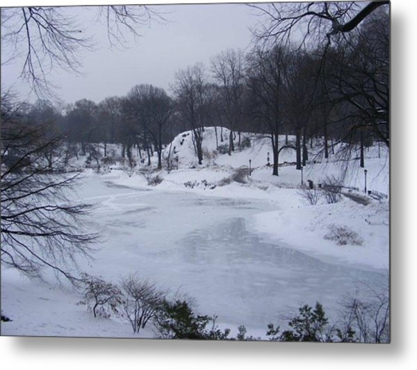 Central Park In The Snow Metal Print by Clare Staplehurst
