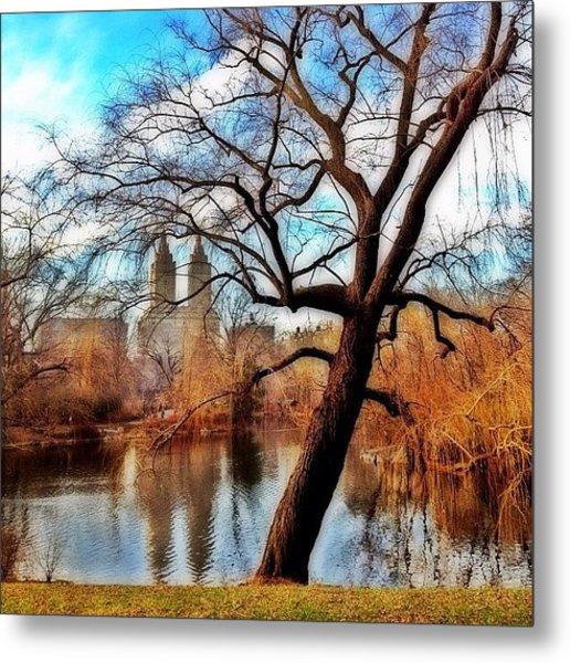 #centralpark #park #outdoor #nature #ny Metal Print