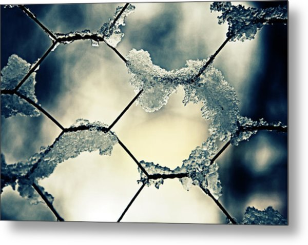 Chainlink Fence Metal Print