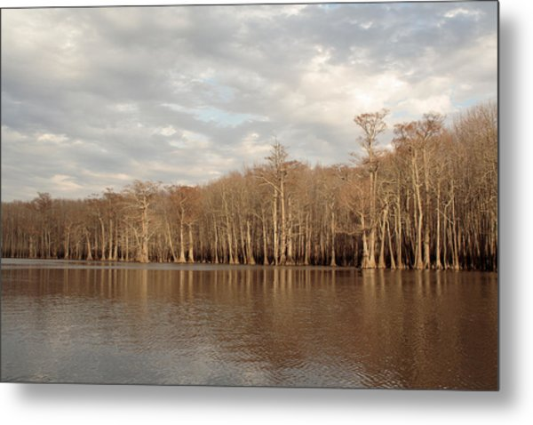 Metal Print featuring the photograph Champion Lake by Daniel Reed