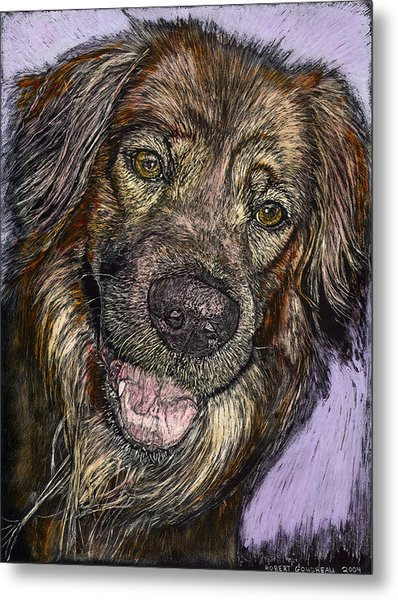 Chester The Dog Metal Print by Robert Goudreau