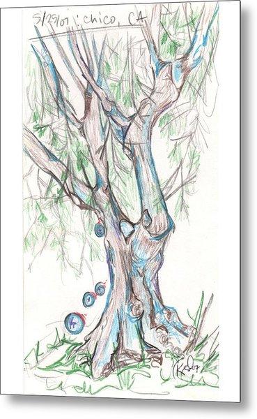 Chico Ca River Tree Metal Print by Carol Rashawnna Williams