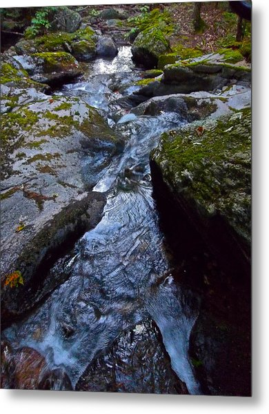 Childs Brook Summer 21 Metal Print by George Ramos