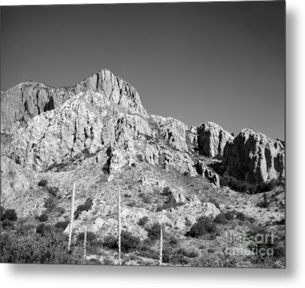 Chisos Mountain Detail Metal Print