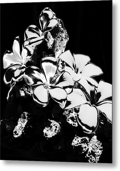 Chrome Plumeria Metal Print by Elizabeth  Doran