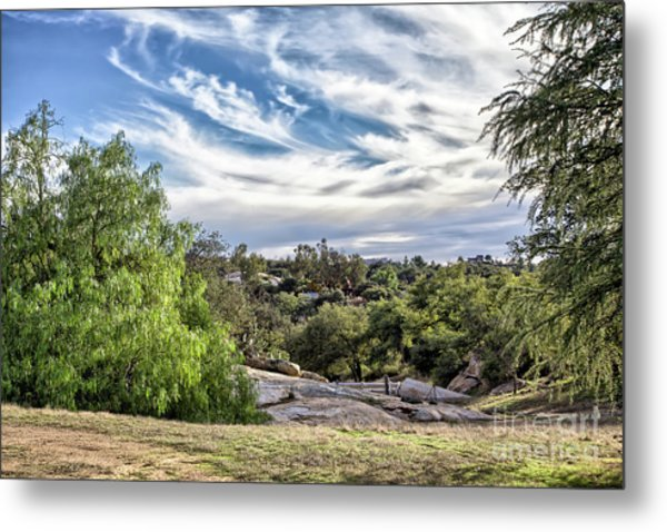 Cirrus Clouds With Trees Metal Print