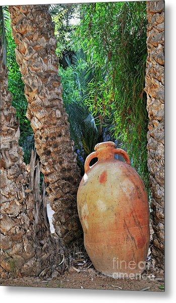 Clay Jar By Palm Tree Metal Print by Sami Sarkis