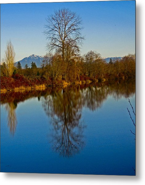 Clear And Cold Metal Print by Seth Shotwell