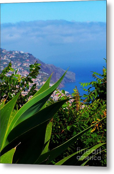 Cliffs Of Madeira Metal Print by Patricia Land