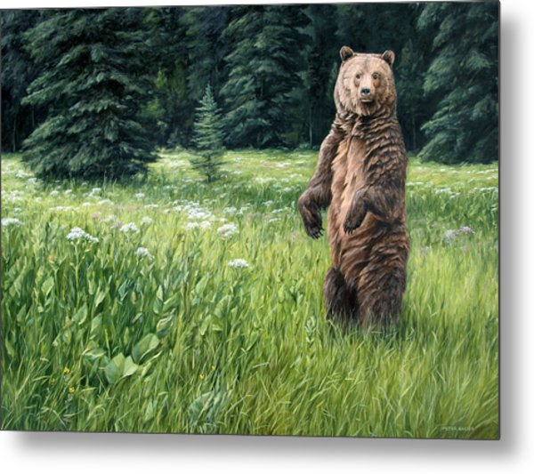 Close Encounter Metal Print