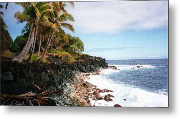 Coconut Palms Metal Print