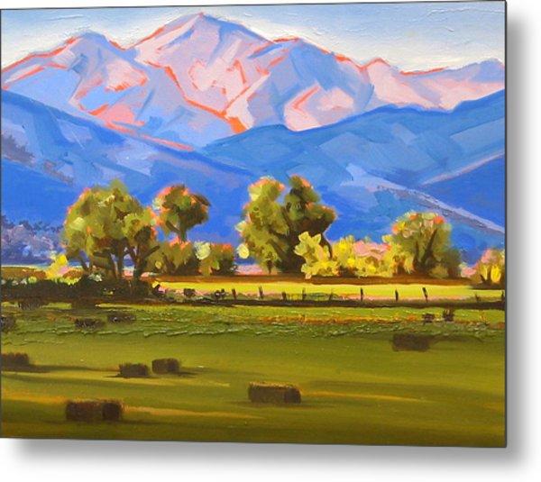 Colorado Pasture Metal Print