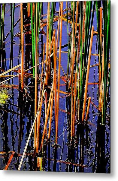 Colorful Reeds Metal Print by Beth Akerman