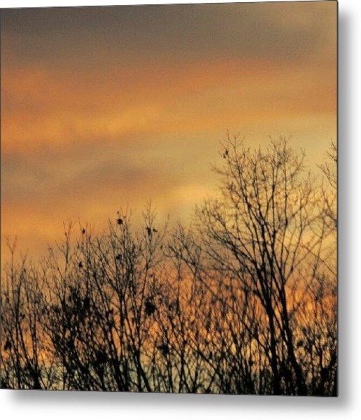 Colorful Sundown Metal Print