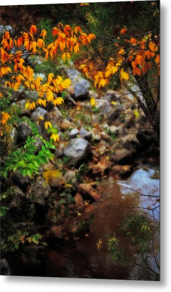 Colors On The Creek Metal Print by Toni Hopper