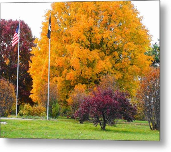 Colours Of Fall Metal Print