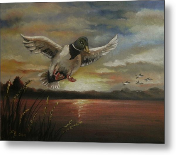 Coming Home Metal Print by Laura Brown