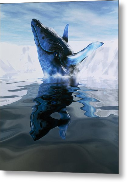 Computer Illustration Of A Humpback Whale Metal Print by Victor Habbick Visions